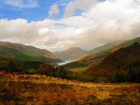 View of the Hillside Above Loch Lubnaig in the Trossachs.